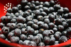 bleu-berries