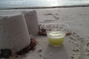 pic-of-melon-drink-573x430