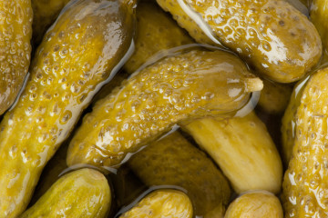 Pickles-fuel-for-endurance-races