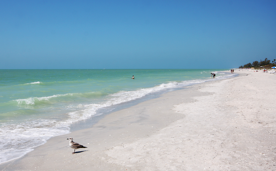 White Beaches of Sanibel Island