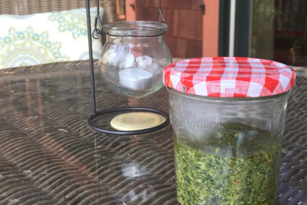 Plant-Based Paleo Pesto